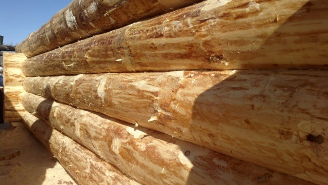 Выбор древесины для бани